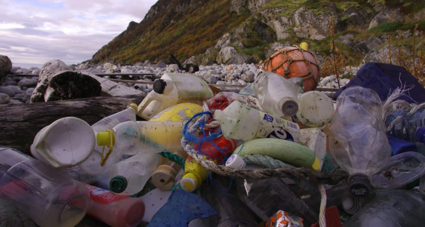 Plastic eating system recycling crisis
